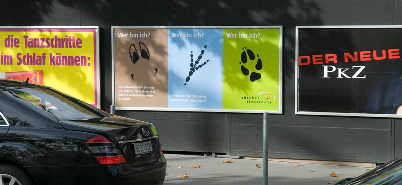 Grafikdesign für Tierschutzplakate